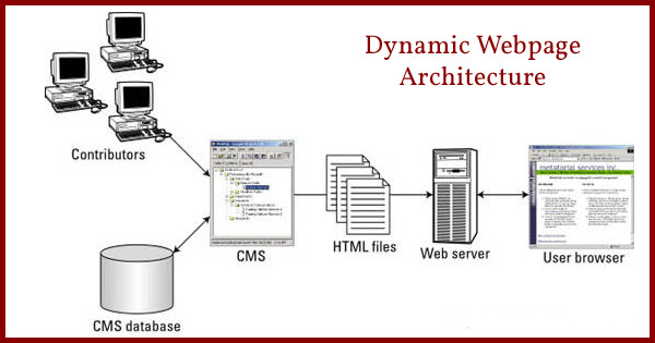 dynamic website, dynamic websites, advantages of a dynamic website, disadvantages of a dynamic website