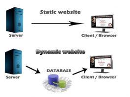 dynamic vs static website, dynamic website and static website