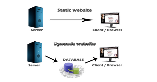 dynamic vs static website, dynamic website and static website